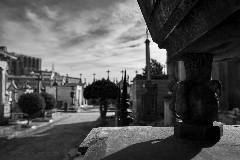 Álvaro Caramés. Fotografía. Agromonte. 2-1-2019